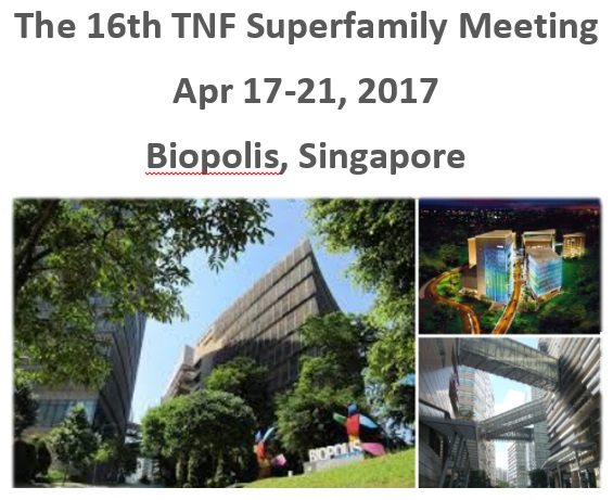 Image for the 16th TNF Superfamily meeting