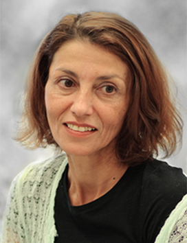 image of Prof. Sima Lev