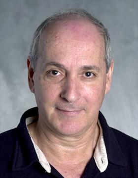 image of Prof. Dov Zipori