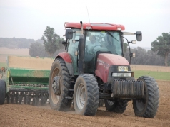 Wheat Sowing 2013