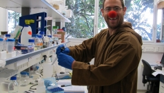 Purim, 2012 picture no. 5