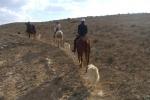 Trip to Mitzpe Ramon 2011 picture no. 19