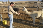 Trip to Mitzpe Ramon 2011 picture no. 20
