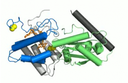 Crystal structure of QSOX