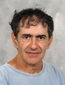 Prof. Amnon Horovitz