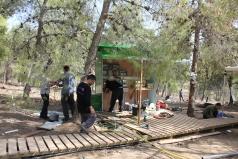 Yatir Irrigation Experiment 2015 picture no. 1