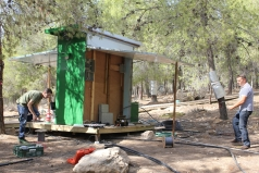 Yatir Irrigation Experiment 2015 picture no. 3