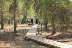 Yatir Irrigation Experiment 2015 picture no. 6