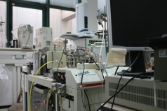 The Eco-physiology Lab picture no. 5