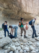 KIT Dead Sea 2014 picture no. 19