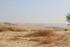 The Mobile Lab -Yatir desert June 2011 picture no. 1