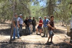 Yatir Irrigation Experiment 2015 picture no. 7