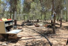 Yatir Irrigation Experiment 2015 picture no. 10