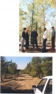 Ric visit 2000