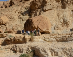 Wadi Tzelim, Israel, 2016 picture no. 19