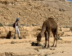Wadi Heimar 2019 picture no. 3