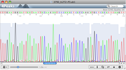 DNA chromatogram