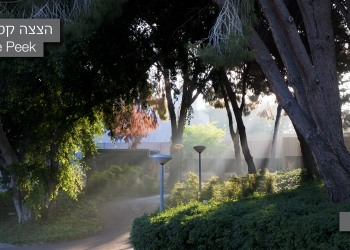 Landscape picture no. 21