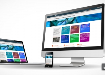 Website design picture no. 13