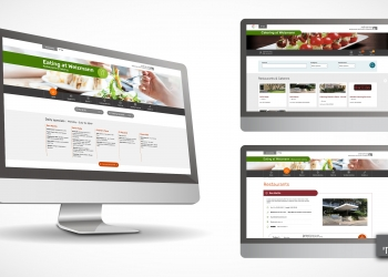 Website design picture no. 12