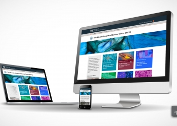 Website design picture no. 1