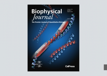 Scientific covers picture no. 12