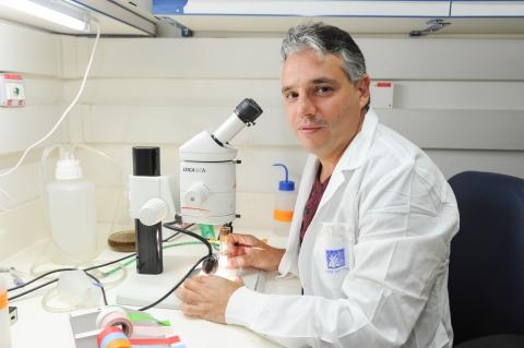 Dr. Eli Arama