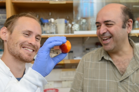 MSc student Offir Lupo and Prof. Avi Levy