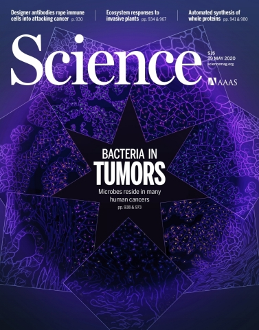 Dr. Ravid Straussman's study, featured on the cover of Science