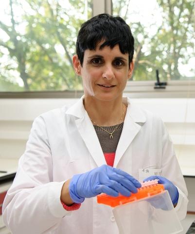 Dr. Ayelet Erez