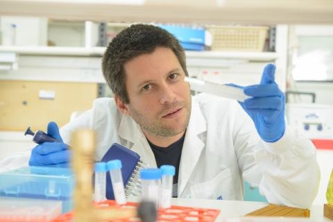 Dr. Roi Avraham