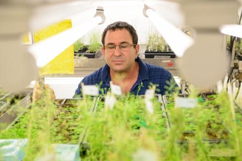 Prof. Yuval Eshed