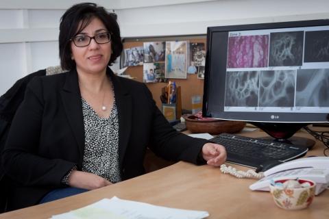 Prof. Irit Sagi