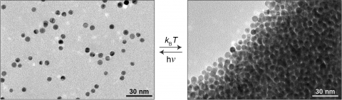 Nanoparticles in a light-sensitive medium scatter in the light (left) and aggregate in the dark (right)