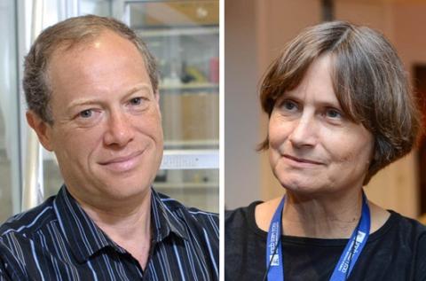 Prof. Lucio Frydman and Prof. Michal Neeman