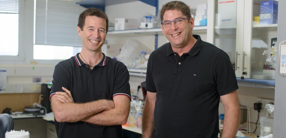 Prof. Rotem Sorek (left) and Dr. Eran Elinav