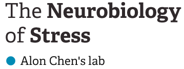 The Neurobiology of Stress, Alon Chen lab