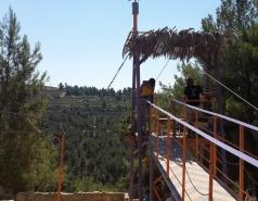 Zipline picture no. 1