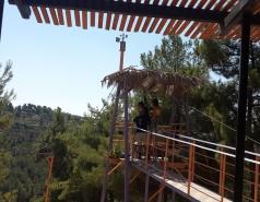 Zipline picture no. 4
