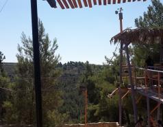 Zipline picture no. 5