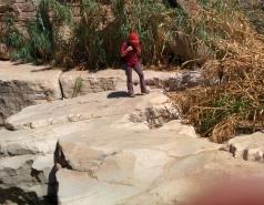 Wadi Kelt picture no. 75
