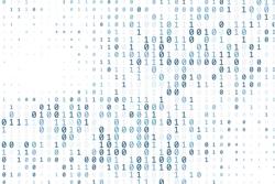 Deciphering Neural Codes