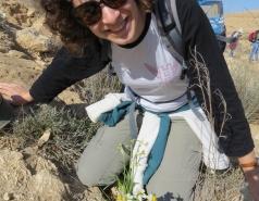2014 - Lab Trip to Wadi Hatzatz and Wadi Daroch picture no. 7