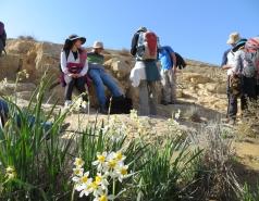2014 - Lab Trip to Wadi Hatzatz and Wadi Daroch picture no. 11