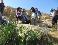 2014 - Lab Trip to Wadi Hatzatz and Wadi Daroch picture no. 12