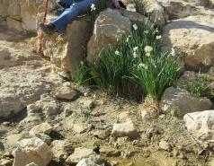 2014 - Lab Trip to Wadi Hatzatz and Wadi Daroch picture no. 14