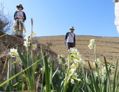 2014 - Lab Trip to Wadi Hatzatz and Wadi Daroch picture no. 17