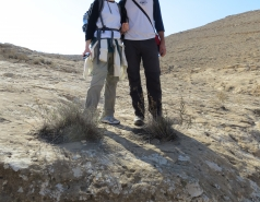 2014 - Lab Trip to Wadi Hatzatz and Wadi Daroch picture no. 18