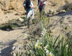 2014 - Lab Trip to Wadi Hatzatz and Wadi Daroch picture no. 21