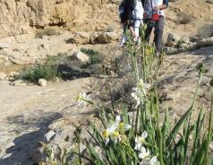 2014 - Lab Trip to Wadi Hatzatz and Wadi Daroch picture no. 22